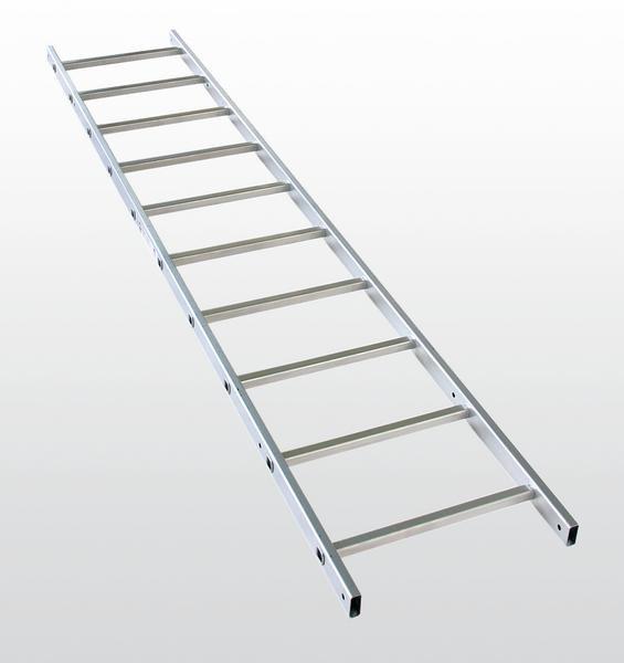 Einzügige Steigleiter mit Rückenschutz, Aluminium blank